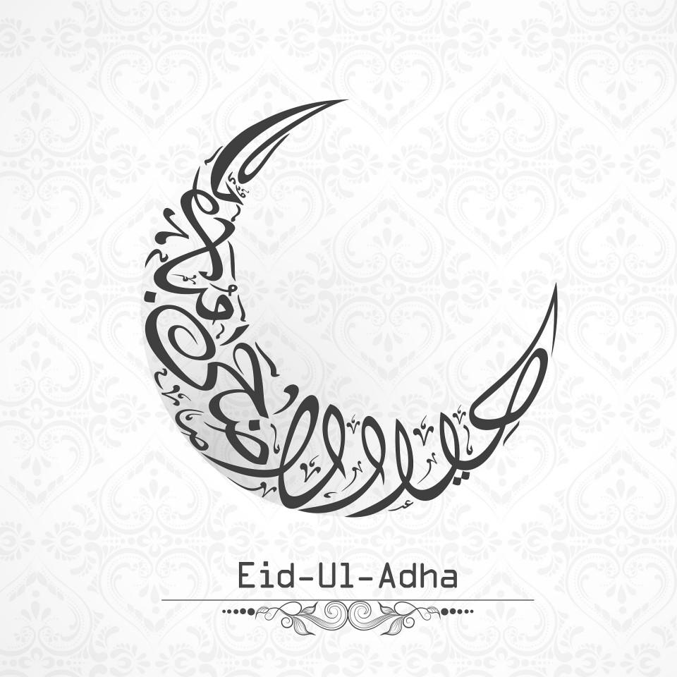 Making Qurbani Donations During Eid ul Adha