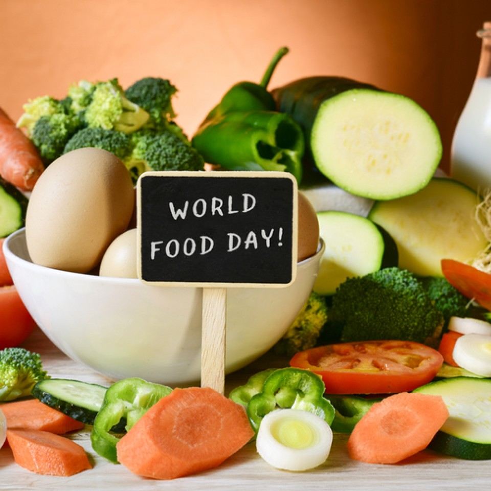 World Food Day Human Relief Foundation